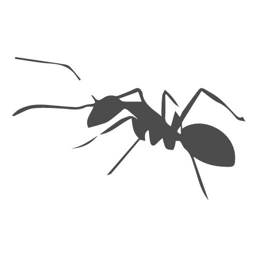 Disinfestazione formiche roma for Esche per formiche